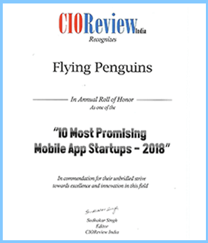 CIO Review | Flying Penguins